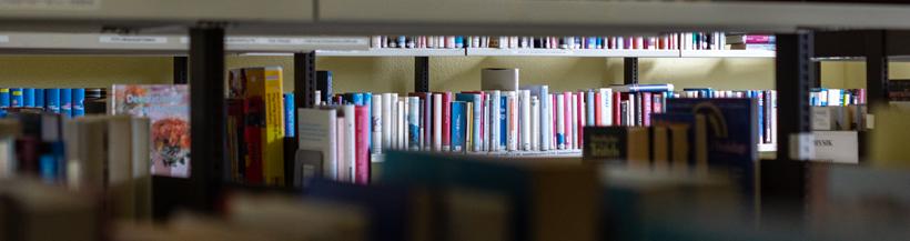 Foto: Ezio Gutzemberg, Stadtbibliothek Boizenburg/Elbe©Ezio Gutzemberg